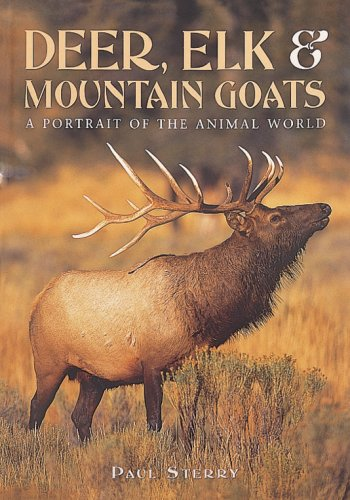 Deer, Elk, and Mountain Goats (A Portrait of the Animal World) (Portrait Elk)
