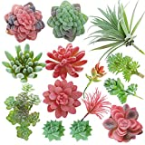 CEWOR 14pcs Mini Artificial Succulents Unpotted Fake Succulent Heads Faux Succulent Assorted for Spring Decoration and House Decoration Larger Image