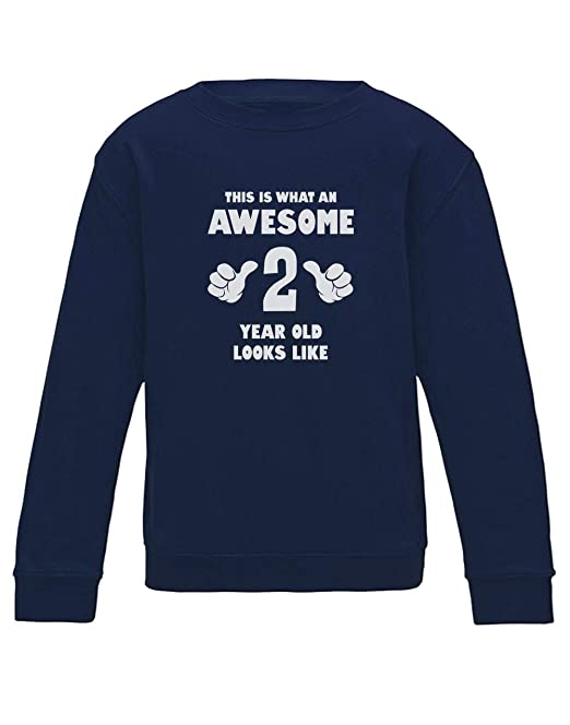 Green Turtle T-Shirts Sudadera para niños - This Is What an Awesome 2 Year Old Looks Like - Regalo Original para niños en su cumpleaños: Amazon.es: Ropa y ...