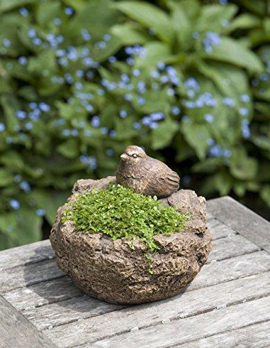 (Garden Terrace Round Statue Planter Finish: Brownstone)