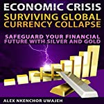 Economic Crisis: Surviving Global Currency Collapse : Safeguard Your Financial Future with Silver and Gold | Alex Nkenchor Uwajeh