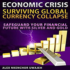 Economic Crisis: Surviving Global Currency Collapse Audiobook
