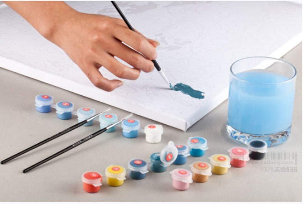 Pintura por N/úmero de Kits Aceite Digital Pintura Pinturas Lienzo Arte de la Pared del Paisaje Ilustraciones para Los Regalos 16 * 20 Pulgadas nadamuSun Pintura al /óleo de DIY por N/úmeros