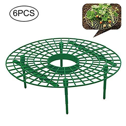 Frame Bush (Firlar Strawberry Supports, Set of 6 Strawberry Growing Protection Frame Stand Plant Fruit Holder for Keeping Elevated to Avoid Ground Rot, Mold, Dirt)