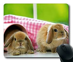 Two Cute Rabbit Masterpiece Limited Design Oblong Mouse Pad by Cases & Mousepads