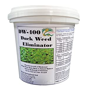Hydra dw 400 duckweed control water treatment pond duck for Garden pool duckweed