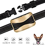 GEEDIAR Bark Collar, Dog No Bark Collars Vibration No Harm Shock Collar - USB Rechargeable Humane Anti Bark Training Collar - Stop Barking Collar for Small Medium Large Dogs (Gold)