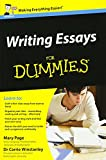 Writing Essays For Dummies