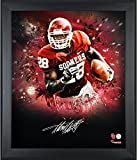"Adrian Peterson Oklahoma Sooners Framed Autographed 20"" x 24"" In Focus Photograph-Limited Edition of 28 - Fanatics Authentic Certified"