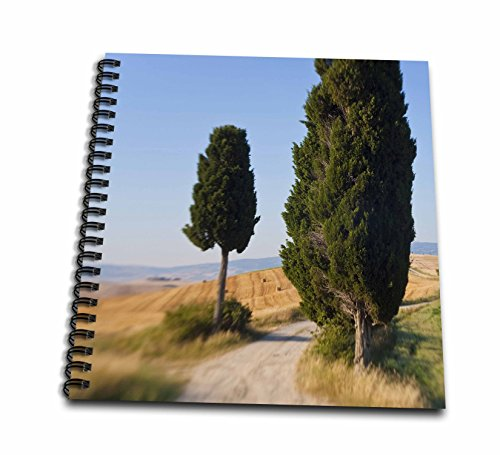 danita-delimont-italy-winding-road-val-d-orica-tuscany-italy-memory-book-12-x-12-inch-db-227671-2