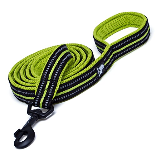 Pet Padded Nylon Leader Rope 3 M Reflective Dog Leash for Medium and Large Puppies Walking Training(Green, 6.5Ft, 6/8 Inch Width)