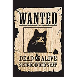 Wanted Dead And Alive Schrodingers Cat Funny Humor Poster 12x18
