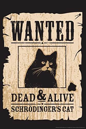 - Wanted Dead and Alive Schrodingers Cat Funny Humor Poster 12x18 inch