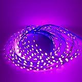LED Strip Lights Closet Light Kitchen Lighting Under Cabinet Lighting 3mm Slim LED 3014 12 Volt LED Lights Kitchen Lighting 450 LEDs 50W LED 16.4 Ft Pink