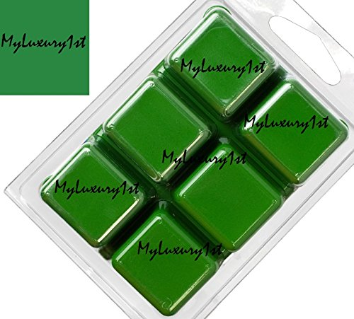 1 Pack of 6 Green Matte Chromium Hydroxide Soap Dye Tint D.I.Y Color Blocks for Melt and Pour Soap Mp Base Bar