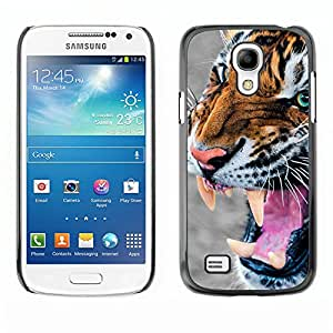 Paccase / SLIM PC / Aliminium Casa Carcasa Funda Case Cover para - Tiger Angry Roar Hunting Animal Fur - Samsung Galaxy S4 Mini i9190 MINI VERSION!