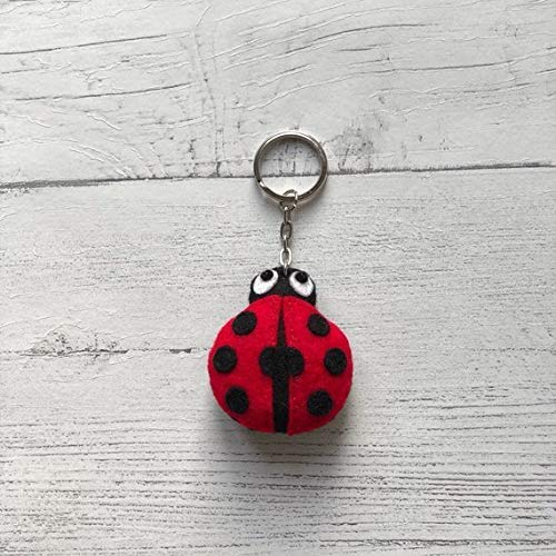 Handmade Personalised Silver /& Red Ladybird Ladybug Keyring Pretty Gift Idea New