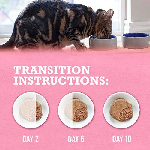 Purina Beyond Grain Free Pate Wild Salmon Recipe Adult Wet Cat Food - 3 oz. Can
