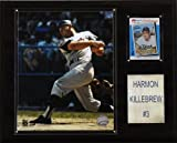 MLB Harmon Killebrew Minnesota Twins Player Plaque