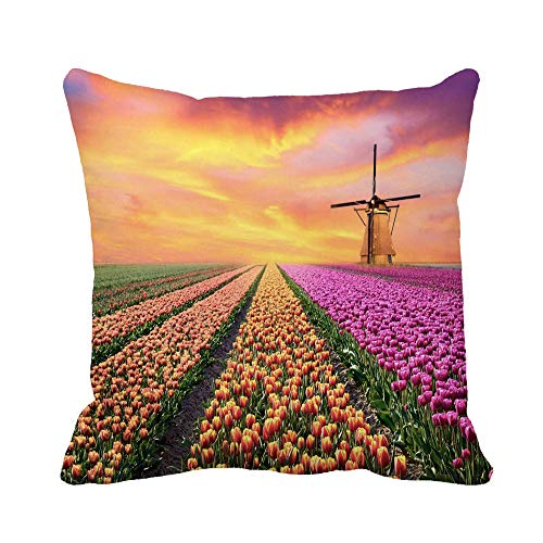 Awowee Throw Pillow Cover Magical Landscape Sunrise Over Tulip Field in The Netherlands 16x16 Inches Pillowcase Home Decorative Square Pillow Case Cushion Cover ()