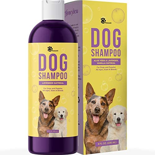 Dog Shampoo for Smelly Dogs – Refreshing Colloidal Oatmeal Dog Shampoo for Dry Skin and Cleansing Dog Bath Soap – Moisturizing Dog Shampoo Oatmeal Lavender Formula for Great Smelling Dog Wash