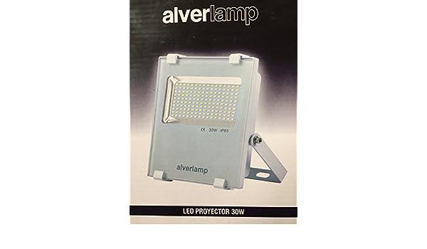 Alverlamp LSPRO3041W - Proyector led 30w 4000k blanco: Amazon.es: Bricolaje y herramientas