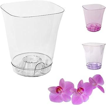 Garden4You Pot de fleurs transparent pour orchidée avec soucoupe Diamètre de 13,5 cm Blanc, blanc, 13,5