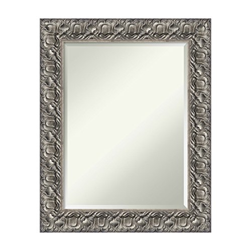 Amanti Art Silver Luxor Bathroom Mirror, Medium Large-24 x 30