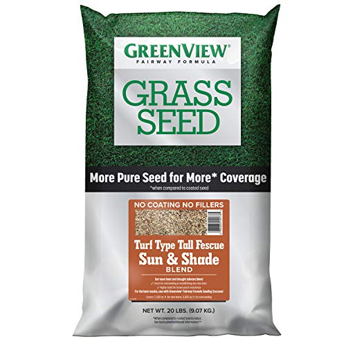 GreenView 2829348 Fairway Formula Grass Seed Turf Type Tall Fescue Sun & Shade Blend, 20 lb. (Best Turf Type Tall Fescue)