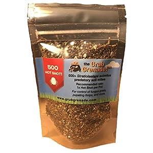 Grub Grenade – Beneficial Predatory Soil Mites – Natural Predators of Fungus gnats, Thrips pupae, diapaused Spider mite…