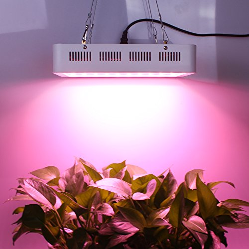 51Y4dt 0RRL - Roleadro 300W LED Grow Light Full Spectrum, 5W Series Plant Lamp for Greenhouse Hydroponic Indoor Plants Veg and Flower