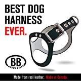ORIGINAL DURABLE Buddy Belt Classic LEATHER Dog Harness For Large Dogs (Black, Size 10)