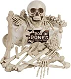 Kangaroos Box Of Bones; 30 Pc Set With Skull, Flexible Jaw, Skeleton Bones