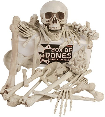 Kangaroos Box Of Bones; 30 Pc Set With Skull, Flexible Jaw, Skeleton Bones ()