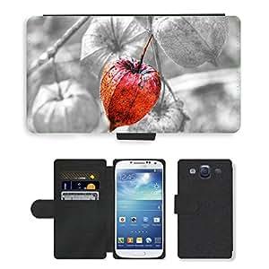 Cas Coq Case Cover // M00105831 Snail Shell Animal Caracol Shell // LG G2 D800 D802 D802TA D803 VS980 LS980