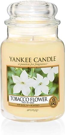 Yankee Candle dufttart 22 g Fresh Cut Roses