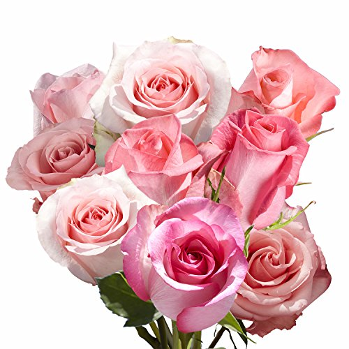 GlobalRose 100 Pink Roses- Exciting Fresh Flowers- Express Delivery by GlobalRose (Image #1)