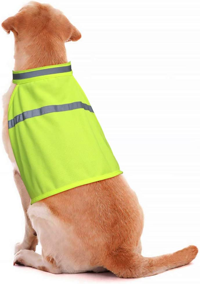 Gilet CATARIFRANGENTE PER CANI TG 3 per stöberhunde