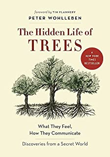 Book Cover: The Hidden Life of Trees: What They Feel, How They Communicate—Discoveries From a Secret World
