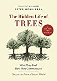 img - for The Hidden Life of Trees: What They Feel, How They Communicate Discoveries from a Secret World book / textbook / text book