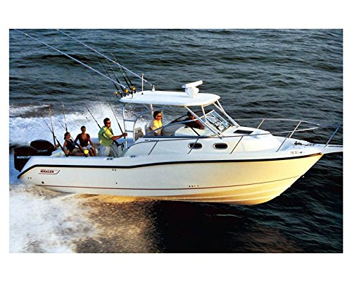 2007 Boston Whaler 305 Conquest Power Skiff Factory Photo