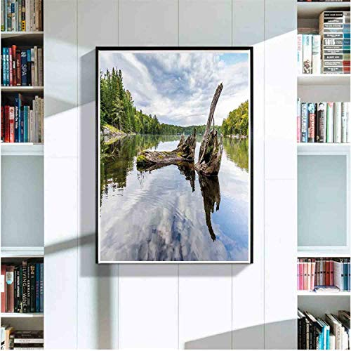 Driftwood Art Mural with Frame. Remains of a White Cedar Tree Trunk in Lake and The Sky Digital,Art Deco Print,Home,Office,Cafe - Trunk Art Deco