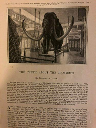 1900 Mammoth in the Smithsonian Institution Washington DC illustrated (Best Smithsonian Museums In Dc)