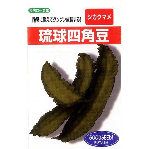 雑豆 種 四角豆 うりずん(種)