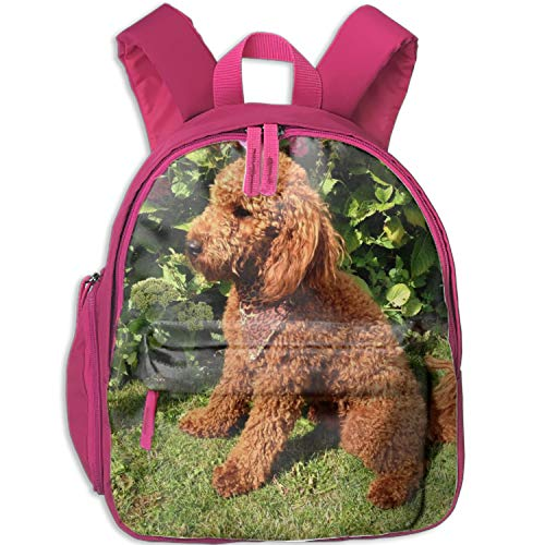 (School Backpack Book Bag Lightweight Poodle Small Backpack for Boys Girls)