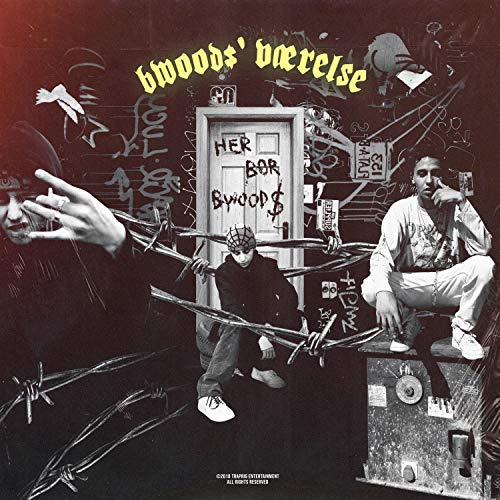 Dum Bitch [Explicit] (Dumas Wood)