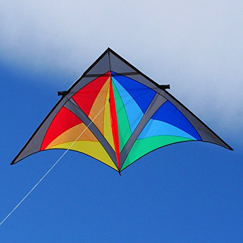 Into The Wind Dan Leigh Trooper Delta Kite by Into The Wind