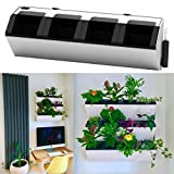 Self Watering Wall Planter | Living Wall | Green Wall for Plant or Herbs (White)