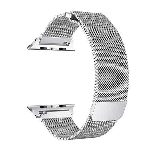 SICCIDEN Compatible with Apple Watch Band 42mm 44mm, Milanese Mesh Loop with Magnetic Clasp Stainless Steel Replacement Band Compatible with Apple Watch Series 4 Series 3 Series 2 Series 1, Silver