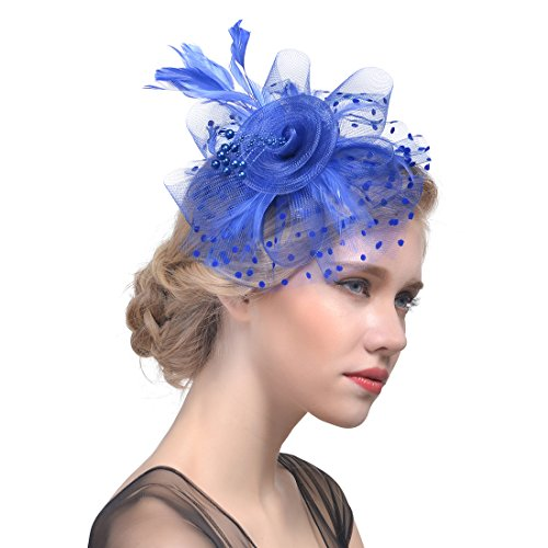 (FeiYu Crafts Penny Mesh Hat Fascinator with Mesh Ribbons andA-Royal Feathers (A-Royal))
